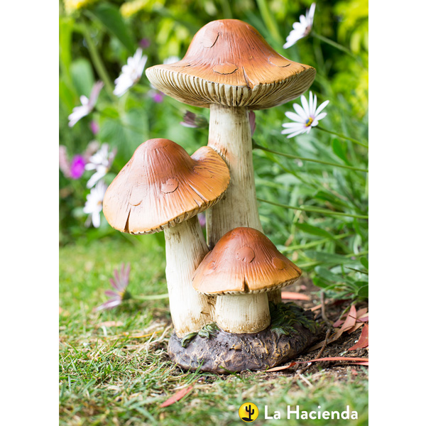 La Hacienda Woodland Range - 3 In 1 Toadstool