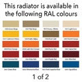 Reina Colona 600 X 1190 (2 columns) Steel Dual Fuel Traditional Horizontal Radiator - RAL Colours